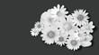 Blumen weiß auf schwarzem hintergrund für Trauerkarte - 163900721