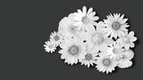 Blumen weiß auf schwarzem hintergrund für Trauerkarte