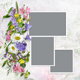 Vintage background with frames and a bouquet of summer meadow flower