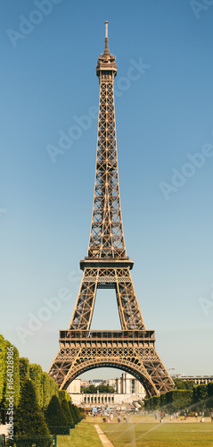 View of Eiffel tower, view from Champ de Mars in the morning with a blue sky in a background