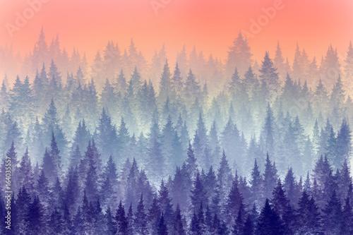 Drzewa w porannej mgle. Malowanie cyfrowe.