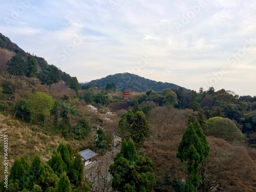 Afternoon view from Kiyomizu Dera temple (UNESCO World Heritage Site) in Kyoto, Japan (Asia) during spring time: Green and brown trees and landscape, red pagoda / shrine and mountains