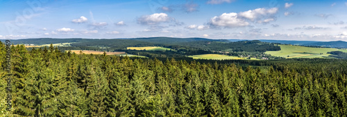 Panoramic shot of summer landscape