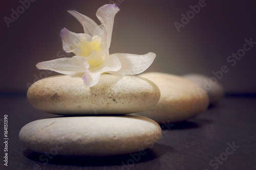 Stones for massage with a flower of orchid dendrobium on a wooden surface