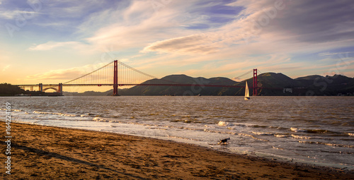 Golden Gate Bridge at sunset with a sail boat and a dog