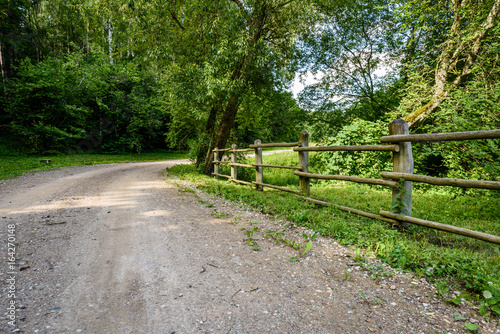 gravel road in summer countryside