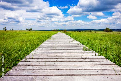 Poster Nahaufnahme mit Blick zum Ziel über einen Steg im Sommer bei Sonne im Nationalpa