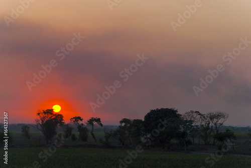 Sunset on Guatemalan coasts, sugarcane plantation and contaminated river