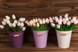 Tulipanes blancos y rosas en cubos de colores.