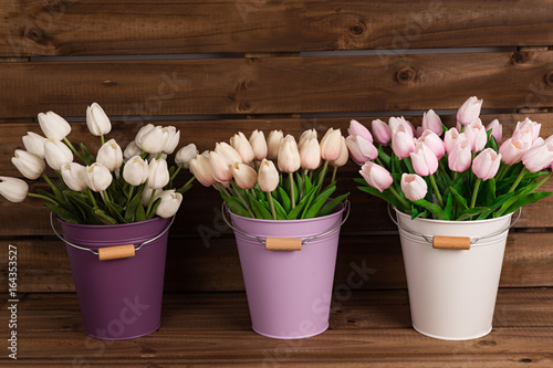 Tulipanes blancos y rosas en cubos de colores. Poster