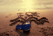 Quadro Ciabatte sulla spiaggia