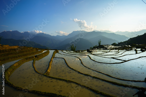 Terraced rice field in water season, the time before starting grow rice in Y Ty, Lao Cai province, Vietnam