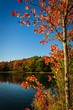 Red leaves on lake near Kennebunkport, Maine