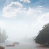 Fog in Kiev