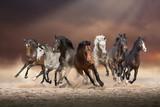 Stado koni biegnie naprzód na piasku w kurzu na wieczornym tle nieba