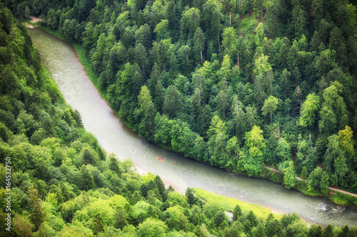 Green forest with river, aerial view as background.