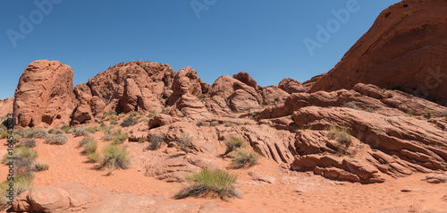 Desert canyon with red rocks