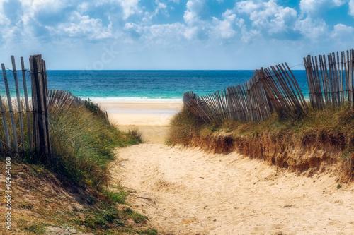 Path to the beach, Quiberon's landscape, Bretagne (Brittany), France - 164546168