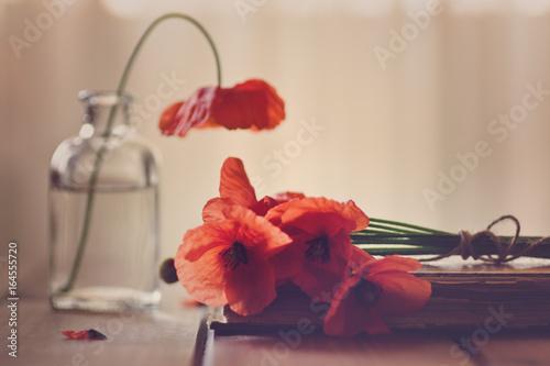Foto op Canvas Klaprozen Poppies