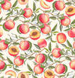 Hand-drawn watercolor seamless pattern with orange fresh peaches on the branch and flowers. Repeated background - 164573355