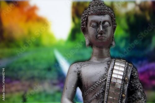 Poster Imagen de Buda con fondo de vegetación de colores