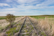 Empty Overgrown Railway Tracks in Canadian Prairie