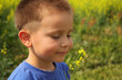 Smiling boy with canola flower