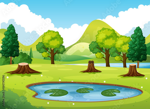 Staande foto Kids Forest scene with little pond