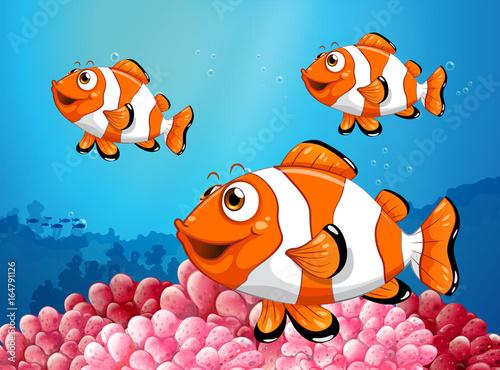 zabawa-w-oceanie,-blazenki,-ryby,-bajki