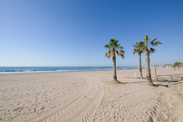 landscape Almadraba Beach in Benicassim, Castellon, Valencia, Spain, Europe. Lonely golden sand, palm trees, blue clear sky and Mediterranean Sea