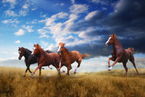 A small herd of horses swiftly jumps over the steppe