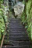 Wandertreppe im Kirnitzschtal