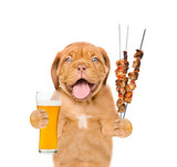 Puppy with beer and grilled meat on skewer. isolated on white background - 164843570