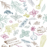 Seamless pattern with hand drawn culinary herbs and spices - 164849307