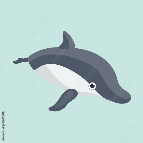 Fototapeta Vector illustration of a funny dolphin.