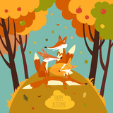 Cute foxes in autumn forest