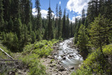 Fototapety Big Sky EZ, Montana