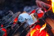 Roasting marshmallows for smores over a colorful campfire