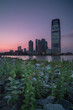 Jersey city during sunset view from flowers