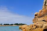 Un jeune garçon saute dans la mer depuis le haut rocher du Voleur à Port-Blanc Penvénan - 164936534