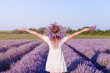 Young beautiful girl in lavender field - 164940581