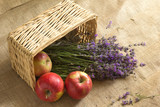 Bouquet of lavagna in a basket with an apple