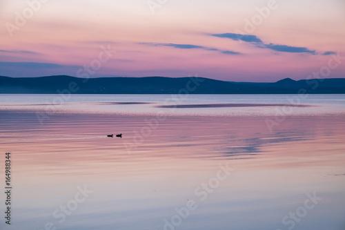 calm purple sunset at Balaton lake in summer Poster