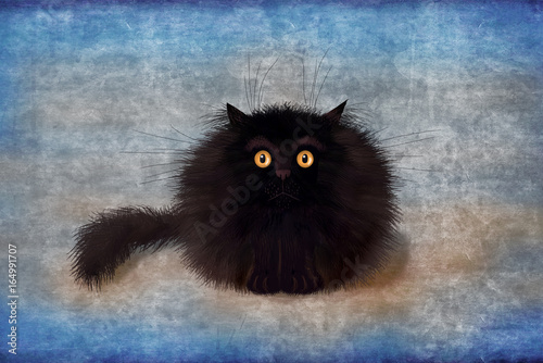 Fluffy Black Mad Kitten On Blue Background