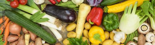 Panorama von viel frischem Gemüse