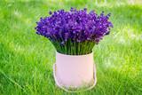 Pink lavender pot on grass
