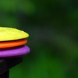 Disc golf discs partial view from side. Yellow, orange and purple discs after rain with green background. Square shaped image with room for text.