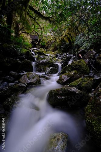 River NZ