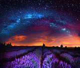 Fototapety Milky Way over lavender field, France