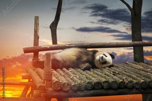 Aluminium Panda Big panda
